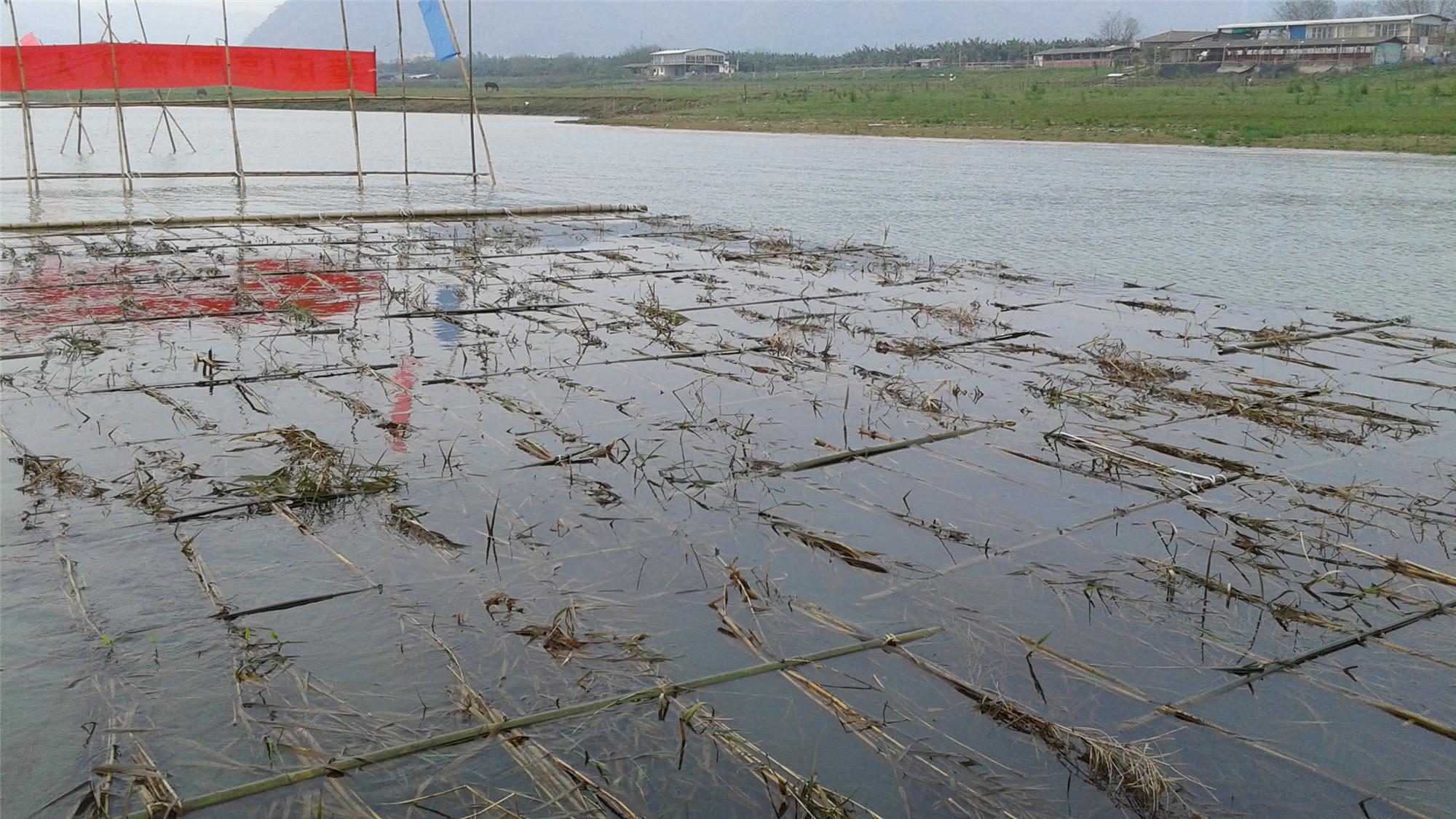 西江人工魚巢修復、設計