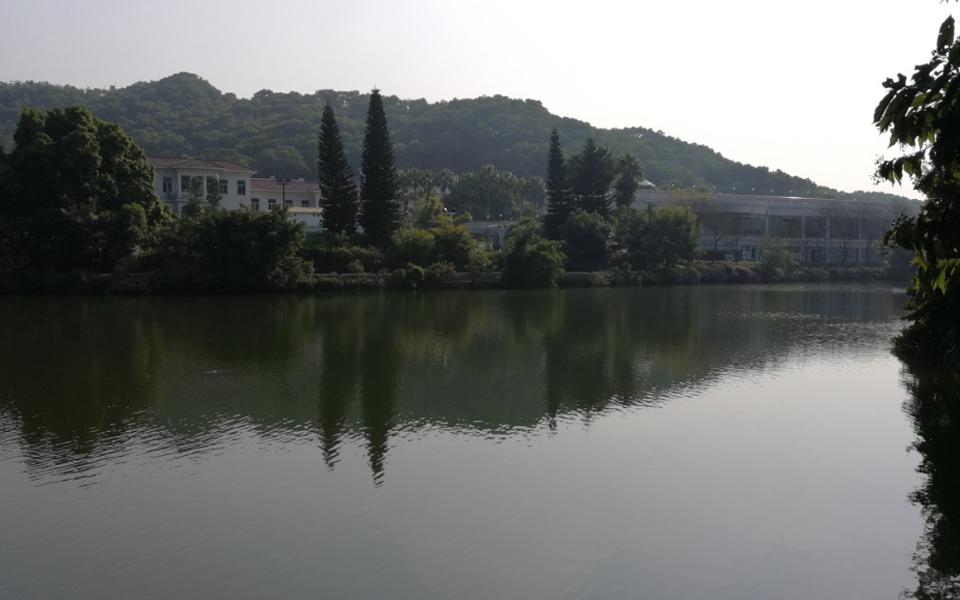 2017-2018年大金鐘水庫水生態修復