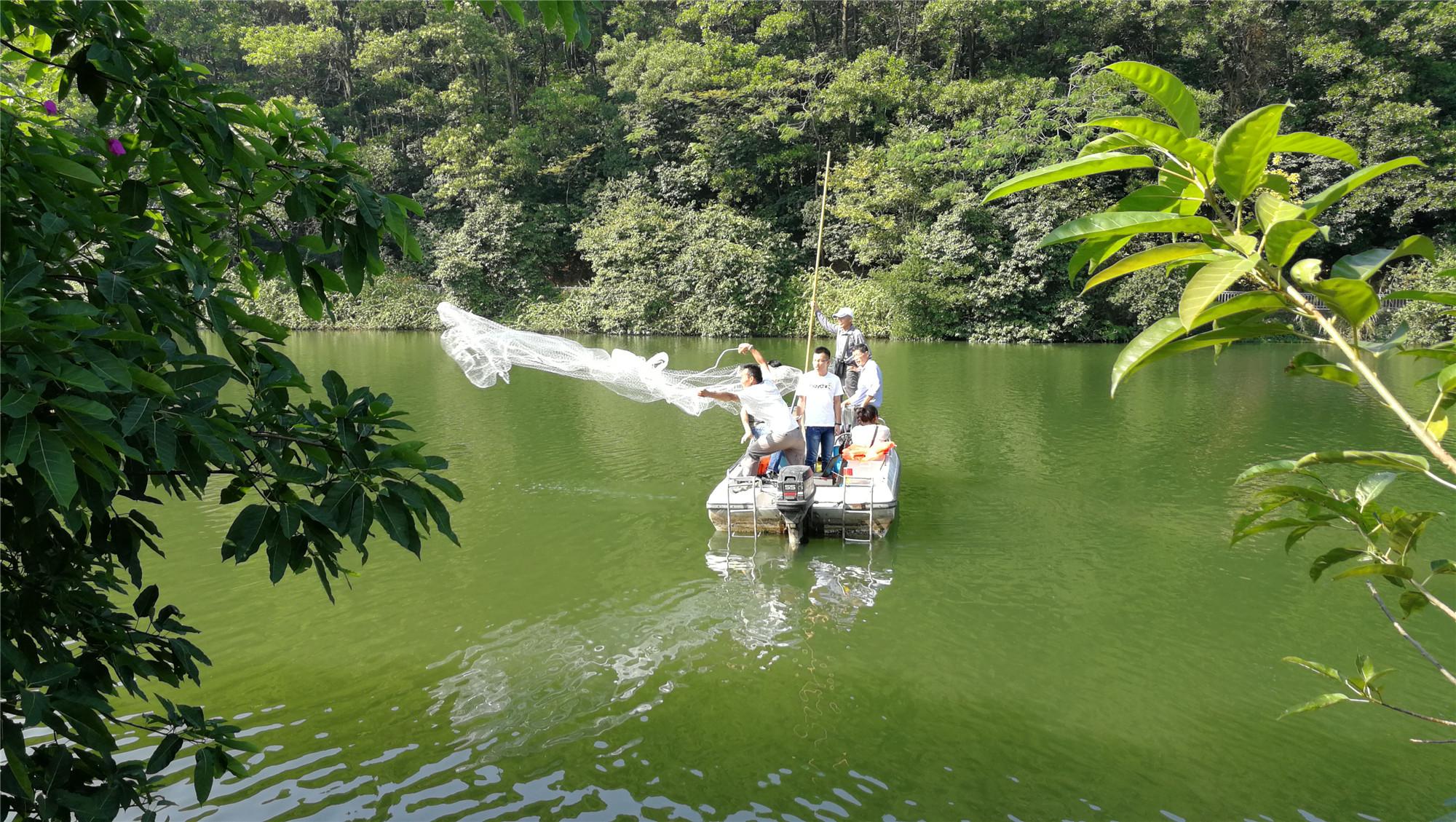 2017年大金鐘水庫外來物種清除防治項目