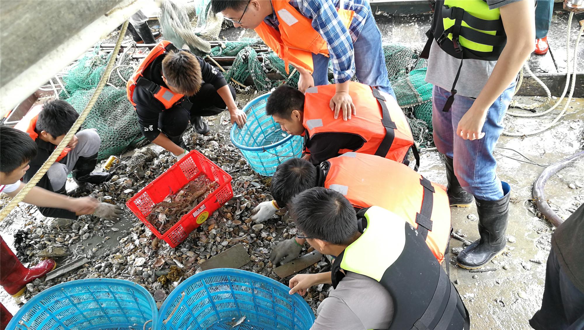 廣東省惠州市大亞灣漁業資源調查